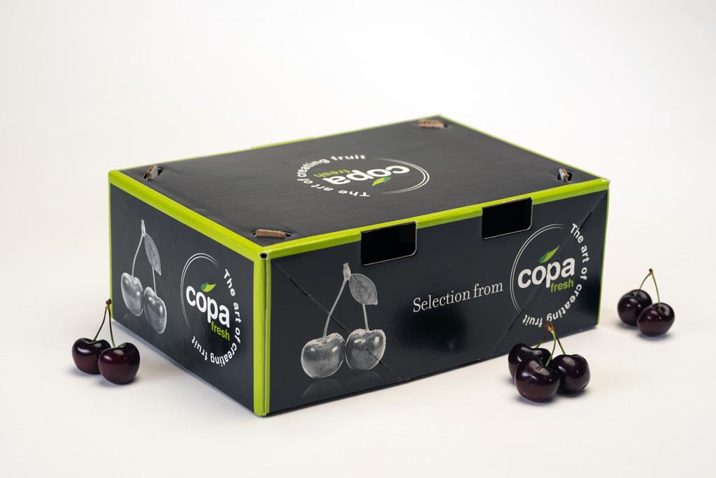 BoxJové Special Packaging -Tapa para transporte aéreo